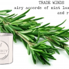 tradewinds-rosermary